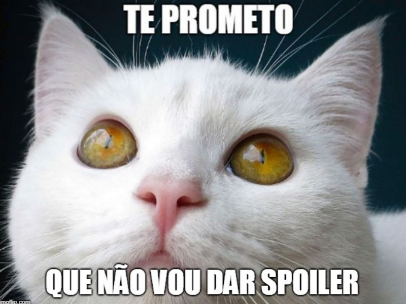 """Um gato branco está com os olhos arregalados. Ele olha para cima. No topo da imagem, em branco, está escrito """"te prometo"""". No rodapé, também em branco, """"que não vou dar spoiler""""."""