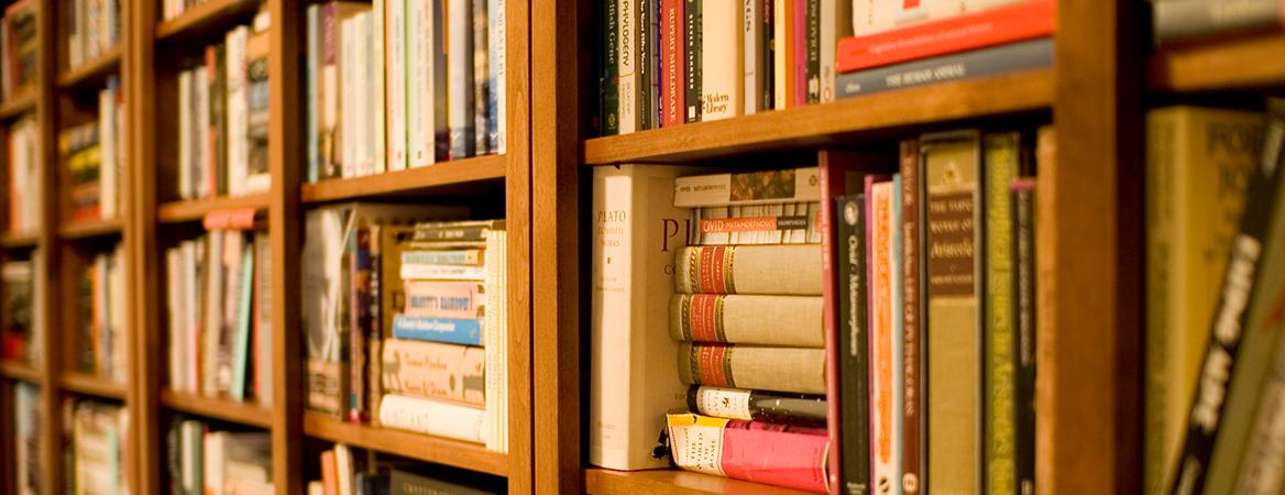 Parte de uma estante com dezenas de livros enfileirados e organizados, lembrando uma biblioteca.