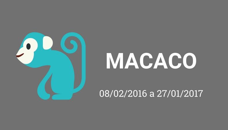 """Arte com fundo cinza e os escritos em branco """"macaco. 08/02/2016 a 27/01/2017"""". No lado esquerdo há o desenho de um macaco, pintado de azul."""