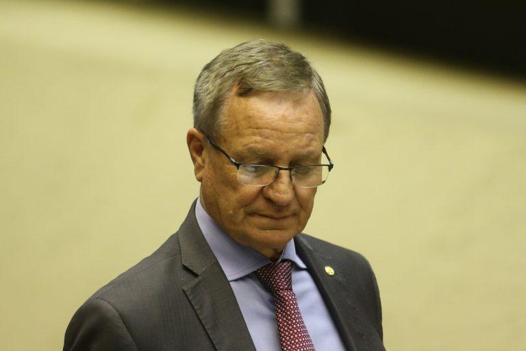 O deputado Valdir Colatto (MDB/SC) no plenário da Câmara dos Deputados  Dida Sampaio / Estadão
